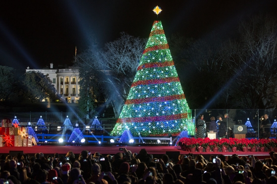National Christmas Tree 2014 White House Official photo